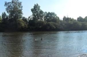 В поселке Голынки Руднянского района утонул человек