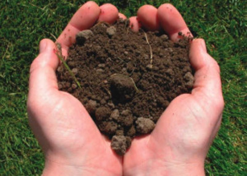 За уничтожение 1,5 гектара плодородной сельхозземли предприниматель выложил 29 миллионов рублей