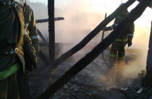 Пожар в Рославльском районе унес жизнь человека