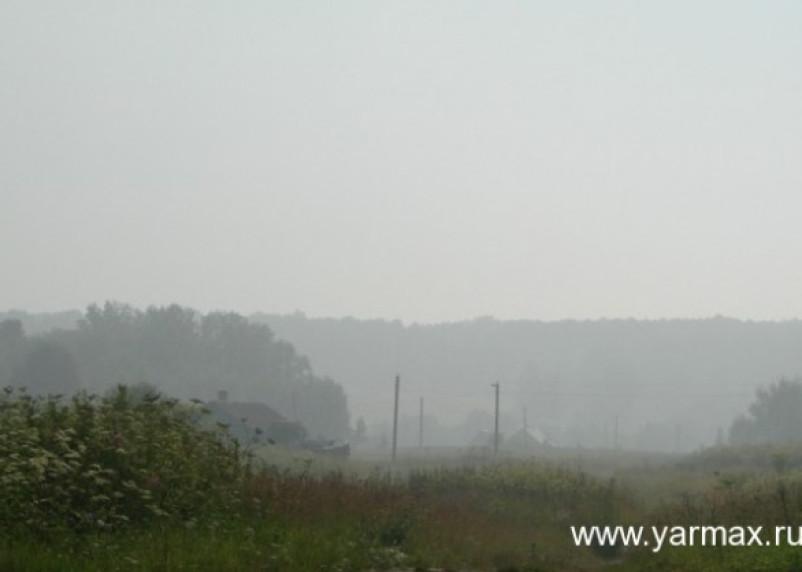 Дым со свалки в Ярцевском районе добрался до трассы М1