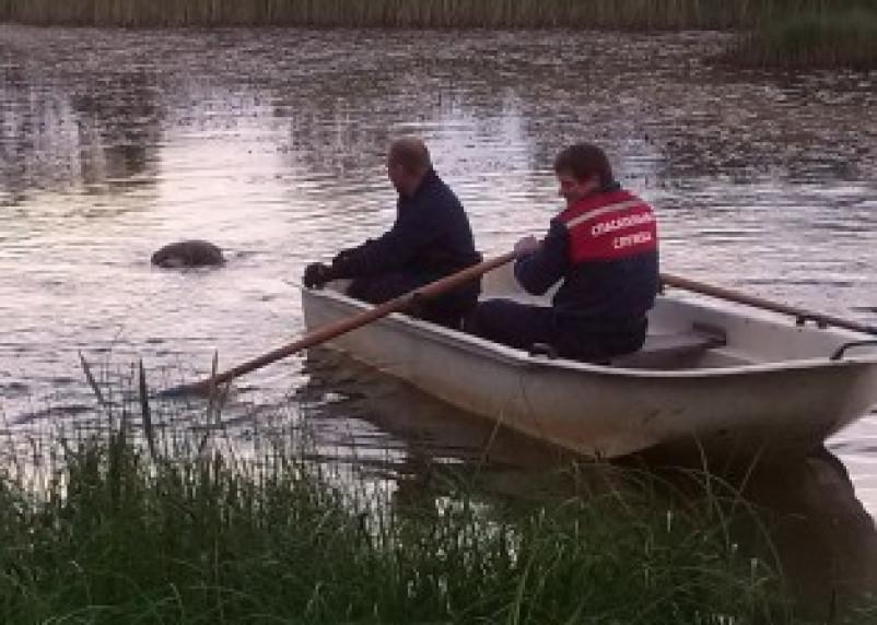 В озере Белоручье Починковского района утонул человек