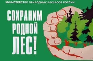 На Смоленщине будет «Лесной патруль»