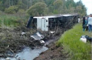 За рулем сошедшего в кювет автобуса был нарушитель-рецидивист