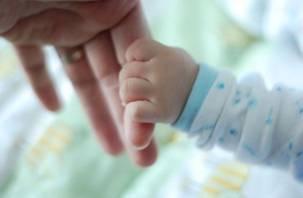 Смоленские семьи должны рожать более 2 детей
