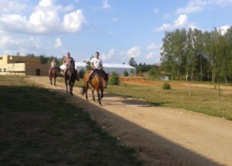 В Пржевальском появится конный двор