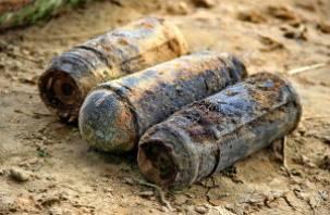 В Днепре возле Катыни рыбак нашел 15 авиабомб