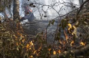 Смоленских пожарных поблагодарил губернатор Тверской области