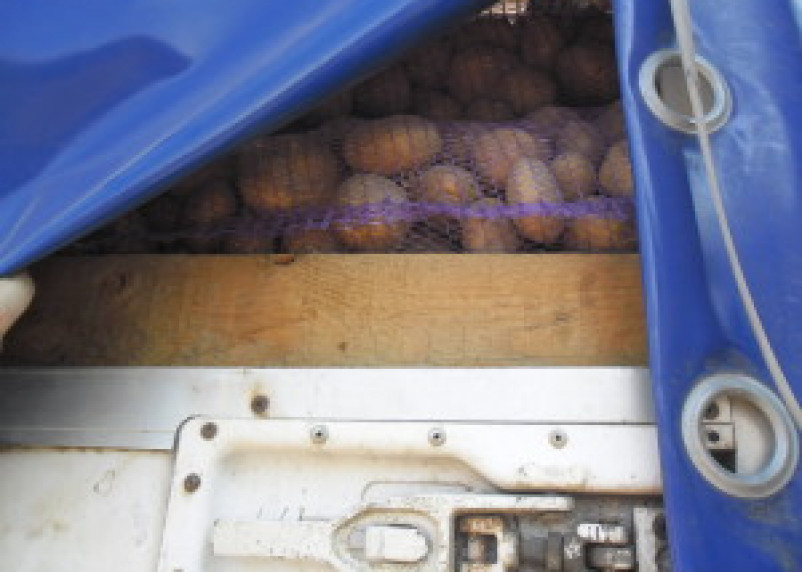 На Смоленщину не допустили ввоз 20 тонн белорусского картофеля и свеклы