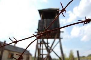 Наркопередача не дошла до осужденных аноховской колонии