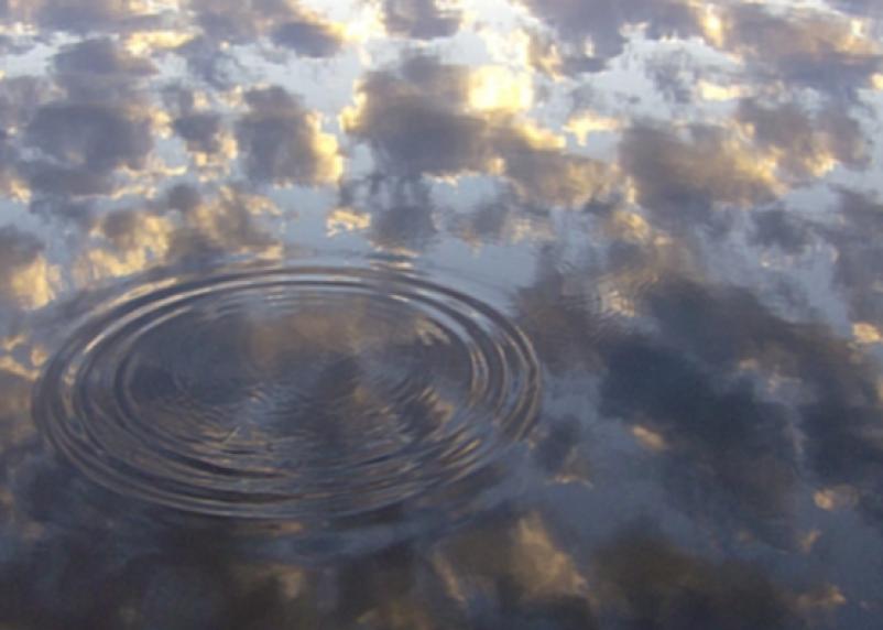 На Реадовском озере утонул шестилетний ребенок