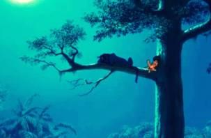 Пропавший подросток всю ночь просидел на дереве