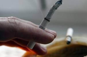 Незатушенная сигарета оказалась последней для жителя Понизовья
