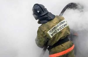 На улице Фрунзе горела машина