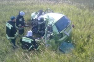 В деревне Никольское разбилась на машине 43-летняя женщина-водитель
