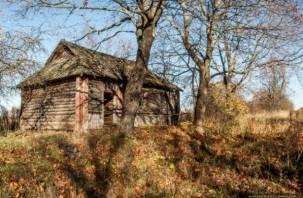 Правительство выделит  Смоленской области средства на поддержку села