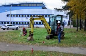 Парк 1100-летия Смоленска убирают от деревьев