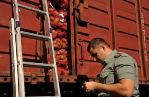 В страны бывшего СНГ не попадут 144 тонны сухого молока и 63 тонны картофеля