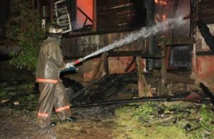 В Хиславичском районе в огне сильно пострадали мать и сын