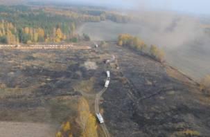 Смоляне задыхаются от смога, идущего от горящих брянских лесов