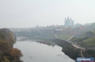 Пал сухой травы в Смоленской области принял масштабы стихийного бедствия