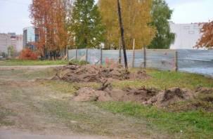 Снос деревьев на улице 25 сентября в Смоленске был согласован с властями