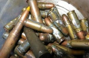 Ограбленный вязьмич сам пойдет под суд за хранение боеприпасов