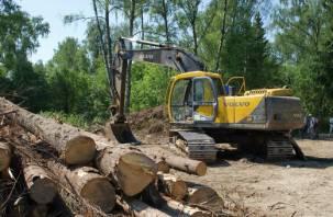 Рославльчанина будут судить за вырубку леса на миллион рублей