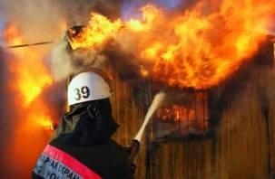 В текущем году в огне погибли 88 человек