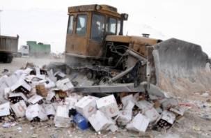 На Смоленщине уничтожено более 60 тонн алкоголя и спиртосодержащей продукции