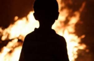В Смоленской области в огне погиб ребенок