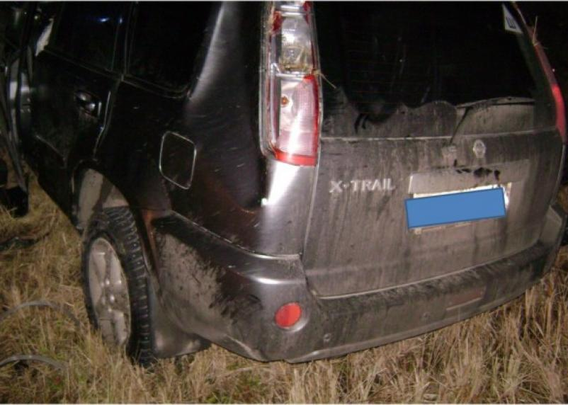 В Вяземском районе в ДТП с лосем пострадало четыре человека