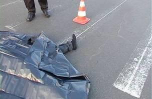 На Витебском шоссе насмерть сбили пешехода
