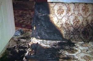 В смоленском микрорайоне Колодня пожарные спасли пятерых человек