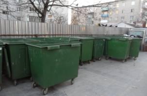 Мусорные площадки в Смоленске ушли на подряд
