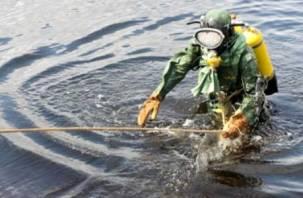 На Княжеском озере нашли утопленника