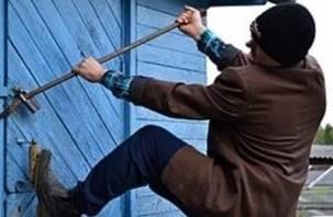 В Смоленске раскрыта серия осенних дачных краж