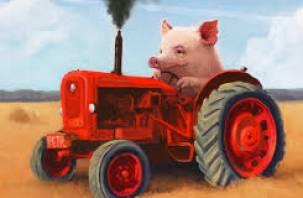 В Темкинском районе у бизнесмена похитили трактор