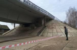 В Смоленской области принято решение о ремонте просевшего моста в Велиже