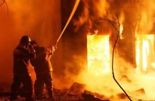 Четыре человека погибли при пожарах в Вязьме и Рославльском районе