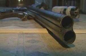 Житель Починковского района может загреметь в тюрьму за хранение оружия