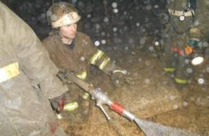 В Рославле при пожаре дома погибло два человека и пострадал ребенок