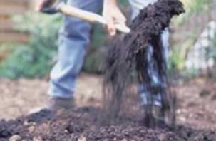 В Смоленске нашли закопанный труп пропавшего гастарбайтера из Беларуси