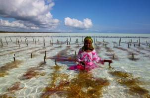 В смоленском Zanzibar открывается фотовыставка
