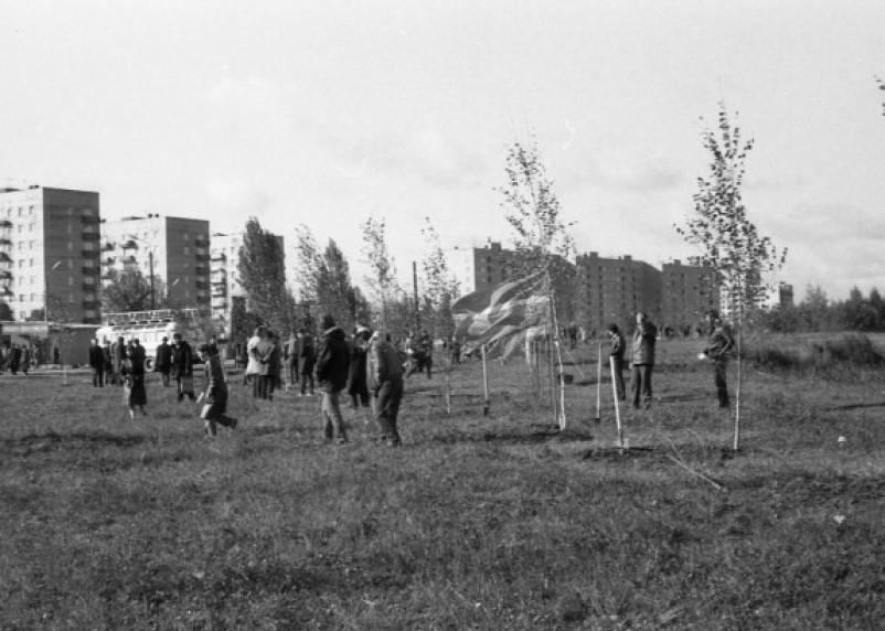 Новый торговый комплекс, или что осталось от парка 1100-летия Смоленска
