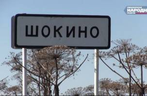 Сирота-инвалид из Шокина всё-таки получит благоустроенное жилье