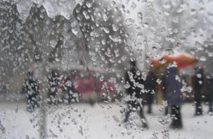 В Смоленскую область пришло тепло