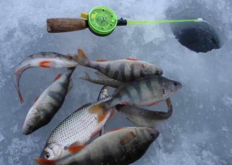 В Смоленской области пройдут соревнования по рыбной ловле
