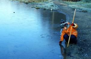 Крещенских морозов в Смоленской области не ожидается