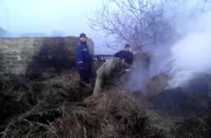 В Смоленском районе скот задохнулся в горящем хлеву