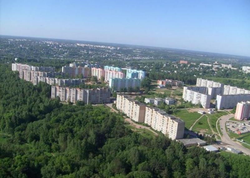В Смоленске решают судьбу березовой рощи на Королевке